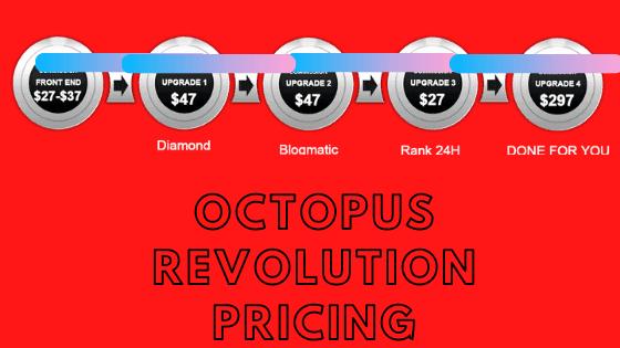 Octopus Revolution Sales Funnel